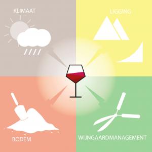 Terroir heeft invloed op de wijn
