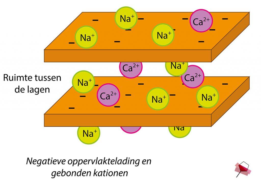 De negatieve oppervlaktelading van het montmorilloniet waaraan kationen binden.