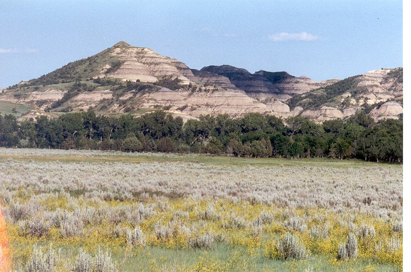 Berg met lagen bentonietklei (witte lagen) in het Theodore Roosevelt National Park, North Dakota, USA.